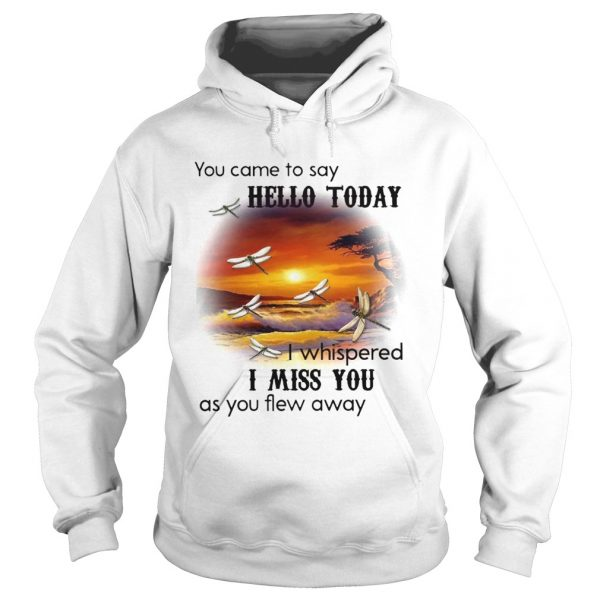 You Came To Say Hello Today I Whispered I Miss You As You Flew Away Dragonfly  Hoodie