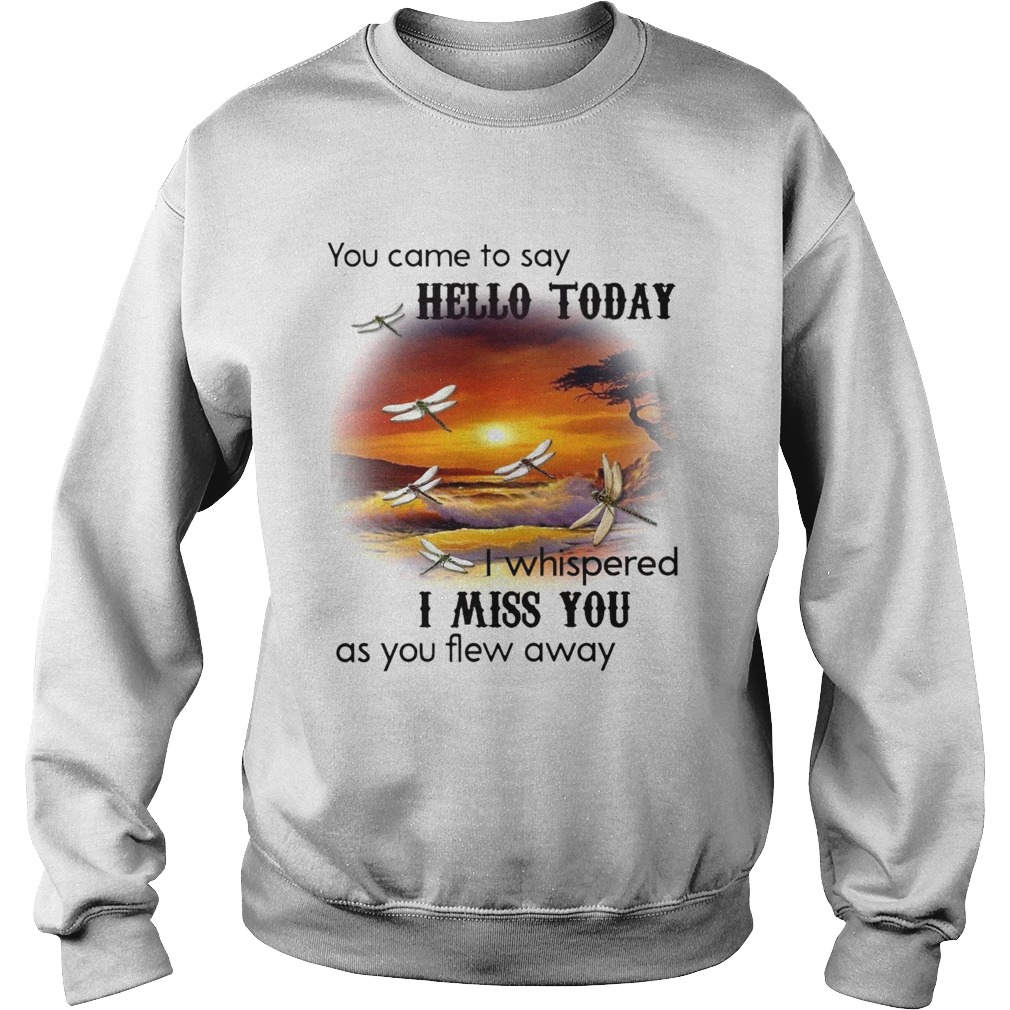 You Came To Say Hello Today I Whispered I Miss You As You Flew Away Dragonfly  Sweatshirt