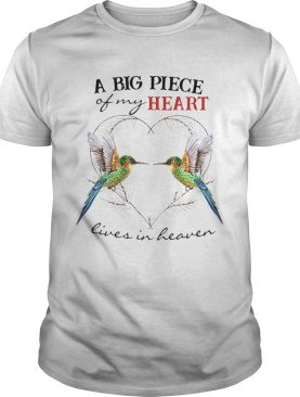 Hummingbird A Big Piece Premium shirt