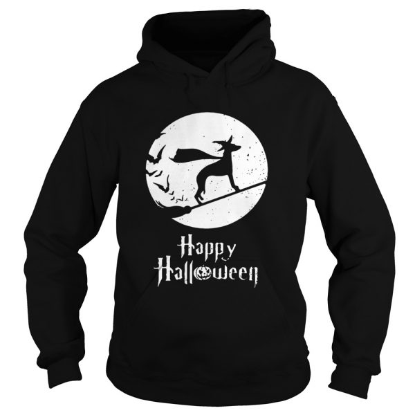 Halloween Witch Whippet Dog Lover  Hoodie